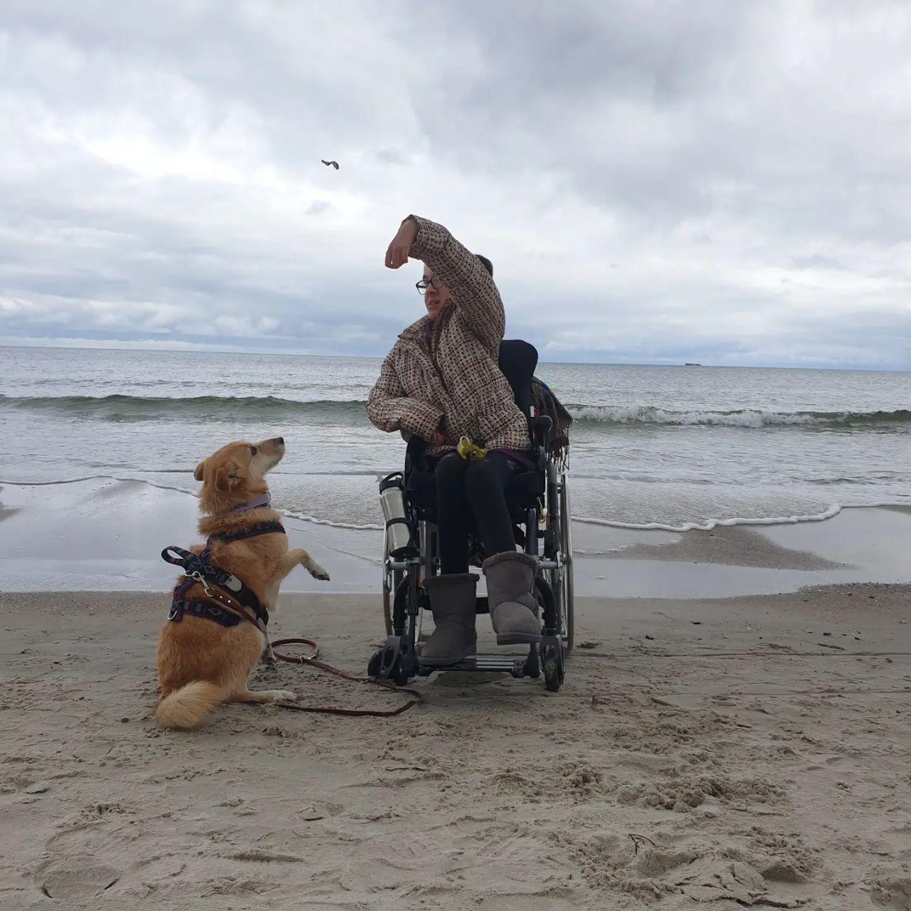 Laura sitzt in einem manuellen Rollstuhl an der Wasserkante. Ein Hund ist links neben dem Rollstuhl und beginnt gerade zu springen. Über dem Hund fliegt eine getrocknete Sardelle.