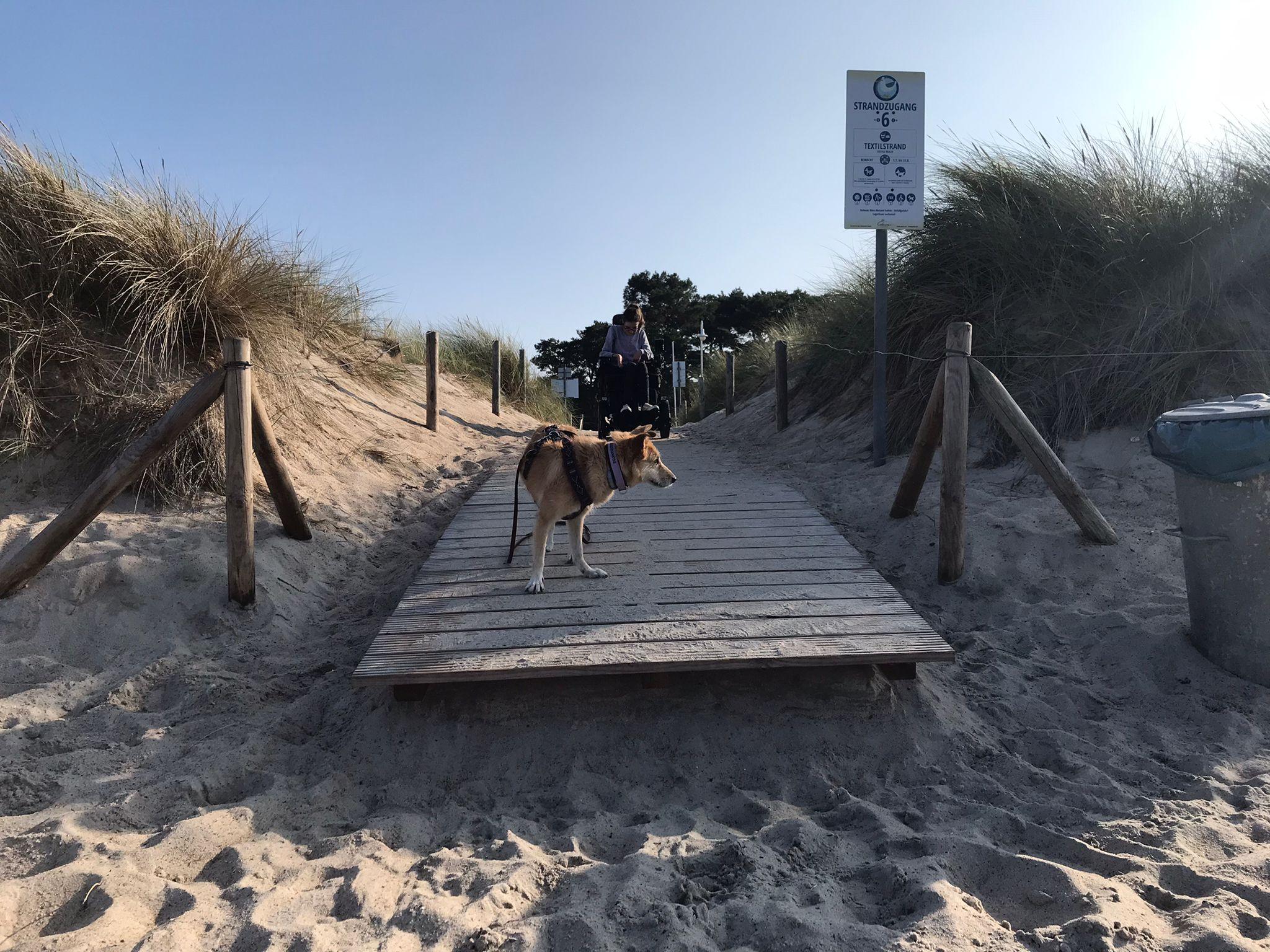 Strandkulisse. Ein Hund steht auf einem Holzsteg ganz vorne. Ein paar Zentimeter weiter vorne ist ein Absatz zu erkennen, über den ein Rollstuhl fallen würde, wenn er dort weiterfahren würde. Weiter hinten, wo das Foto von den Lichtverhältnissen sehr dunkel wird, steht Laura im Elektrorollstuhl.